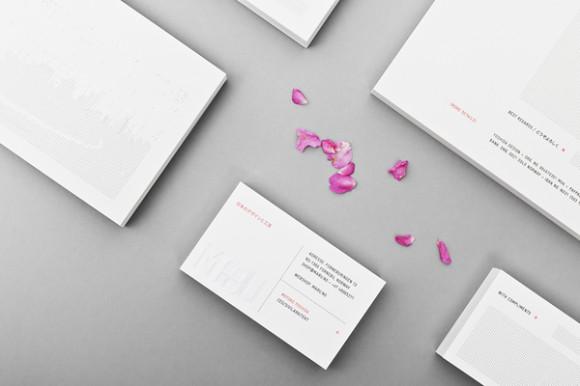 Visual identity architect 30